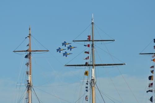 cruising-sea-019