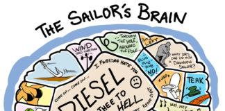 sailors brain