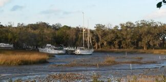 St Augustine Florida Salt Creek